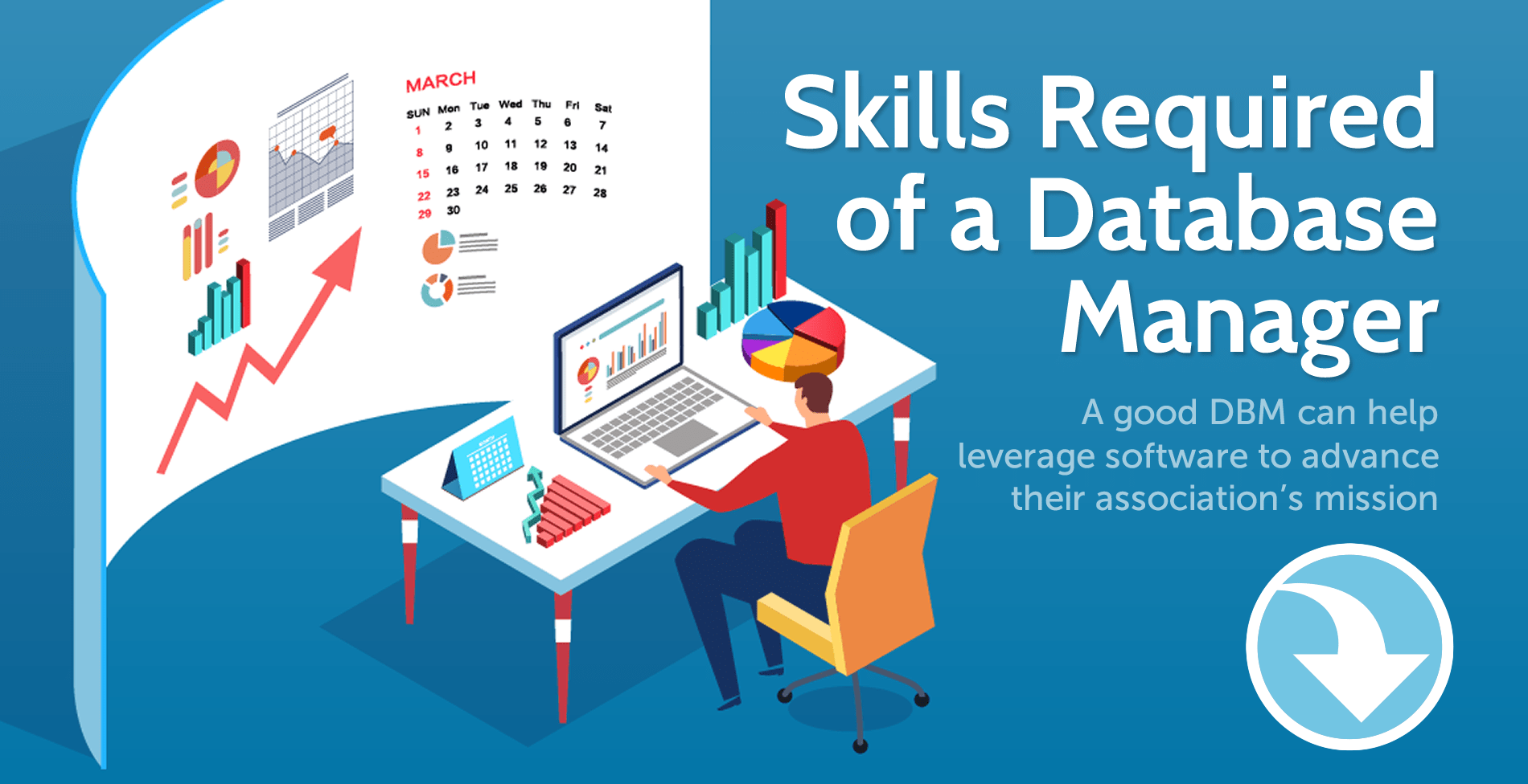 Skills Required of a Database Manager